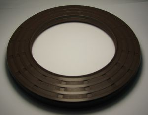 Oil seal  AS 110x170x15 Viton